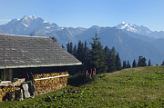 Alp Photos - Chalet in the swiss alps Bettmeralp Switzerland by Matthias Hauser