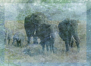 Sarah Vernon Art - Chalk Elephants by Sarah Vernon