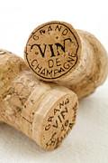 Champagne Corks Print by Frank Tschakert