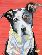 Custom Dog Portrait Paintings - Chance by Sarah Gayle Carter