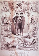 Lithographs Photos - Chang And Eng, 1811-1874, World by Everett