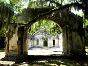 Spanish Moss Photos - Chapel of Ease II by Leslie Revels Andrews