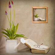 Book Flower Framed Prints - Chapter 2 Framed Print by Ian Barber