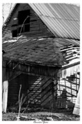 Wooden Barns Prints - Character Years Print by East Coast Barrier Islands Betsy A Cutler