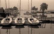 Boston Pyrography Prints - Charles Boats Print by Carl Licence