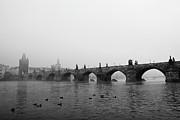 Charles Bridge, Praha Print by Gil Guelfucci