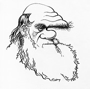 Charles Darwin, Caricature Print by Gary Brown