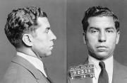 Mug Shot Prints - Charles Lucky Luciano Print by Granger