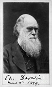 Origin Photo Posters - Charles Robert Darwin, English Poster by Photo Researchers, Inc.
