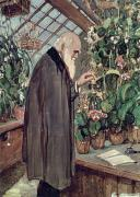 Plants Painting Prints - Charles Robert Darwin Print by John Collier