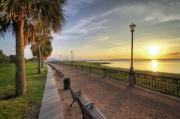 Park Benches Digital Art Posters - Charleston SC waterfront park sunrise  Poster by Dustin K Ryan