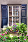 Rainbow Row Framed Prints - Charleston Window Garden  Framed Print by Drew Castelhano