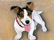 Brown Dogs Pastels - Charley by Jan Amiss