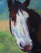 Western Art Pastels - Charolette by Frances Marino