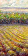 Chateau De Berne Vineyard Print by Bonnie Goedecke