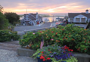 Chatham Art - Chatham Fish Pier Summer Flowers Cape Cod by John Burk