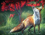 Fox Pastels Prints - Chatter Above Print by Deb LaFogg-Docherty