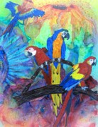 Macaw Mixed Media - Chatter by David Raderstorf