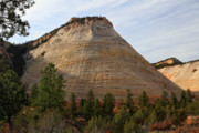 Zion National Park Photos - Checkerboard mesa in Zion National Park by Pierre Leclerc