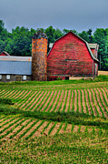 Country Scene Photos - Checkered by Emily Stauring