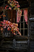 Cabin Window Framed Prints - Checkered Past Framed Print by Christine Annas