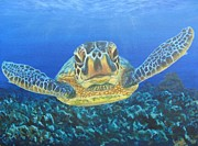 Baby Sea Turtle Paintings - Checking us out by Jennifer Belote
