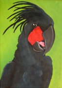 Parrot Print Paintings - Cheeky by Una  Miller