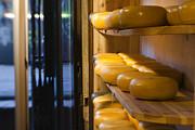 Kasia Dixon - Cheese