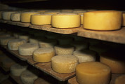 Saint Moritz Prints - Cheese Ripens On Shelves In A Cave Print by Taylor S. Kennedy