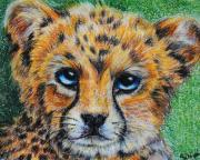 Cheetah Painting Framed Prints - Cheetah Cub Framed Print by Jai Johnson