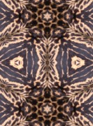 Magissimo Digital Art - Cheetah Print by Maria Watt