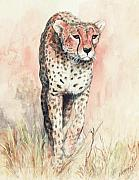 Cheetah Painting Framed Prints - Cheetah Running Framed Print by Morgan Fitzsimons