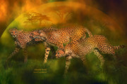 Predator Art Prints - Cheetah World Print by Carol Cavalaris