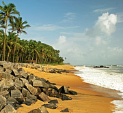 Coconut Palm Tree Prints - Chembarika Beach, Kasargod Print by Rajesh Vijayarajan Photography