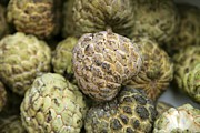 Annona Photo Prints - Cherimoya Fruit (annona Cherimola) Print by Bjorn Svensson