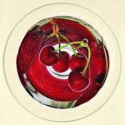 Bubbles In Water Posters - Cherries in a Wine Glass Poster by Kaye Menner