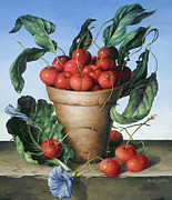 Flower Still Life Posters - Cherries in terracotta with blue flower Poster by Amelia Kleiser