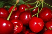 Lenka Kendralova - Cherries