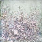 Cherry Blossom Grunge Print by Paul Grand