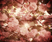 Flowering Tree Posters - Cherry Blossom Sky Poster by Amy Tyler
