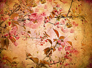 Textured Floral Digital Art Prints - Cherry Blossom Tapestry Print by Jessica Jenney