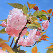 Cherry Blossoms Painting Prints - Cherry Blossom Time Print by Leah Hopkins Henry