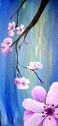 Diane Peters - Cherry Blossoms 2