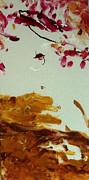 Cherry Blossoms IIi Print by Luz Elena Aponte