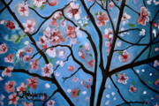 Cherry Blossoms Painting Prints - Cherry Blossoms in Bloom Print by Elizabeth Robinette Tyndall