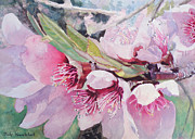 Cherry Blossoms Painting Metal Prints - Cherry Blossoms Metal Print by Judy Kowalchuk