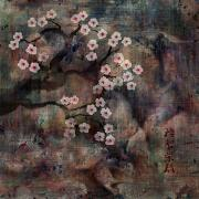 Landscape Digital Art Metal Prints - Cherry Blossoms Metal Print by Rachel Christine Nowicki