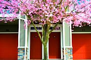 Sakura Framed Prints - Cherry Doors Framed Print by Noel Zia Lee