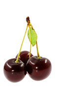 Food And Beverage Photo Originals - Cherry by Igor Sinitsyn