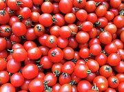 Backgrounds Metal Prints - Cherry Tomatoes Metal Print by Junku